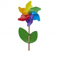 Rainbow Cino